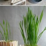 DIY: Decorar una maceta fácilmente / Decorate a flower pot easily