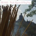 Buda Gigante de Hong Kong / Tian Tan Hong Kong Buda